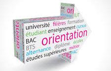 orientation4.jpg